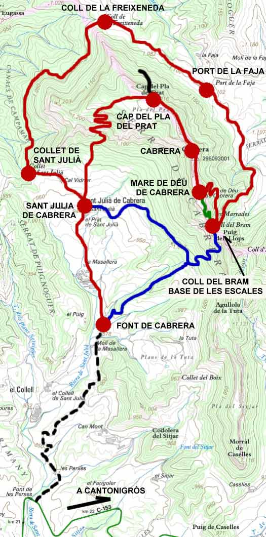 Ruta Cabrera