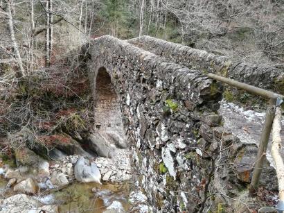 Pont de Salgueda