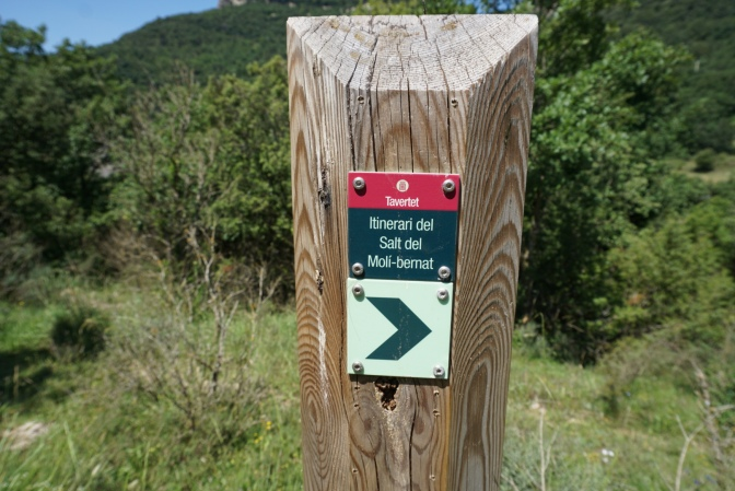 Indicador ruta